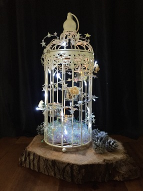 Birdcage with Lights
